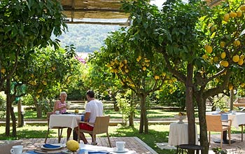 Lunch in the garden - Casa Mariantonia